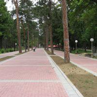 Kragujevac, Veliki Park, Крагуевач