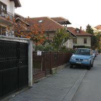 Kragujevac, ulica Branislava Nušića, japanska jabuka, Крагуевач