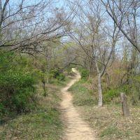 path on hill, Масан