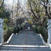 중앙시장쪽에서 제황산 오르는 계단, Чинхэ