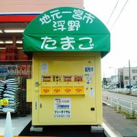 たまご自販機, Касугаи