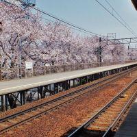岡崎公園前駅, Оказаки