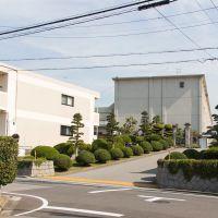 Okazaki  school, Оказаки