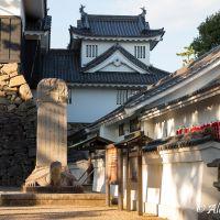 Beautiful Okazaki-Castle, Оказаки