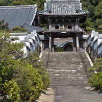 隨念寺, Gate, Оказаки