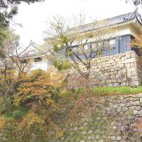 巽閣と石垣 岡崎城, Оказаки
