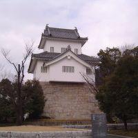 挙母城(七州城) (Koromo Castle), Тойота