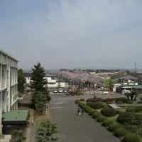 校舎3階より桜並木を眺める, Тойота