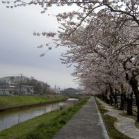 Kusozu River, Акита