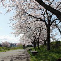 草生津川, Ноширо