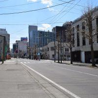 Aomori Street view, Гошогавара