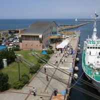 青森港旅客船ターミナル, Тауада