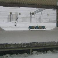 JR Aomori Sta., Хачинохе