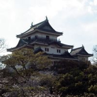 Wakayama Castle 和歌山城, Вакэйама