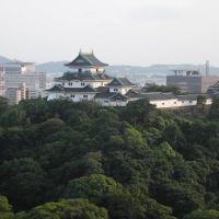 和歌山城(F), Вакэйама