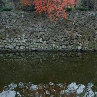 お堀と石垣と紅葉, Вакэйама