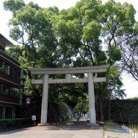 護国神社, Вакэйама