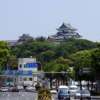 Wakayama Castle / 和歌山県庁付近, Вакэйама