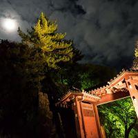 月が出迎える門, Вакэйама