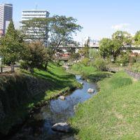 清水川緑地, Гифу