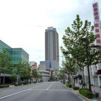 Chusetsu-bashi Street 忠節橋通り(真砂町通り), Гифу