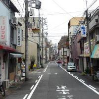 Takanomachi Street 高野町通り, Гифу