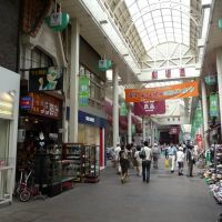Gekijo-dori Shopping Street 劇場通り北商店街, Гифу