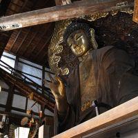 岐阜大仏(日本最大の乾漆仏), Гифу
