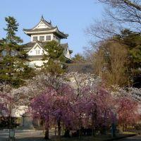 大垣城 / Ogaki Castle, Огаки