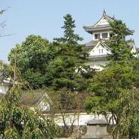 大垣城, Огаки