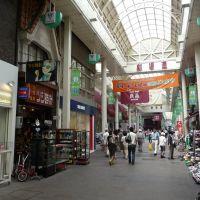 Gekijo-dori Shopping Street 劇場通り北商店街, Тайими
