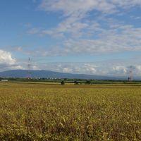 旧札沼線の北竜駅方面の眺望, Нумата