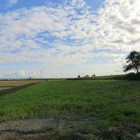 札沼線 北竜駅付近の眺望(右側の盛り上がりが線路跡), Нумата