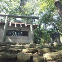 Kanayama-sengen shrine, Ота