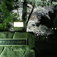 枚方カントリー倶楽部, Ибараки
