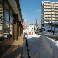 盛岡中央郵便局前(11.1.14)Morioka central post office, Мориока