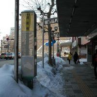 開運橋バス停(11.1.14)Kaiunbashi bus stop, Мориока