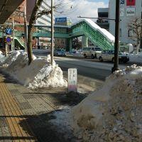 雪(11.1.14), Мориока