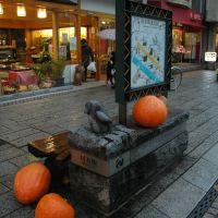 材木町(12.11.17)Zaimoku cho, Мориока