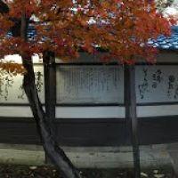 材木町の北上川河畔2(12.11.17), Мориока