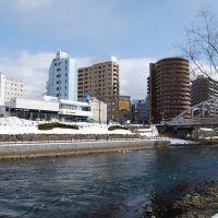 開運橋横のハクチョウ(13.1.20)the swans beside Kaiunbashi bridge, Мориока