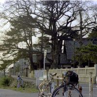 1975.03犀川神社, Каназава