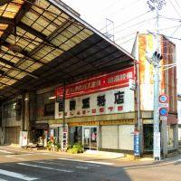 アーケード街の西端部(香川県坂出市), Сакаиде