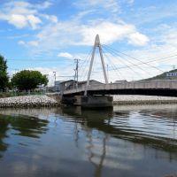 Utazu-cho, 香川県宇多津町の大東川に架かる仲の橋, Сакаиде