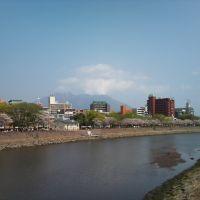 甲突川と桜, Кагошима