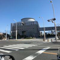 2013/02/24 県庁, Кагошима