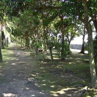 Yojirou,Kagoshima,Japan, Каноя