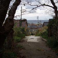 相川の街並みから見る海, Айкава