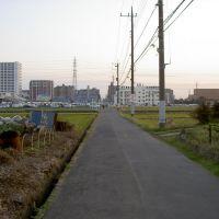 海老名駅北西部 田園地帯, Ацуги