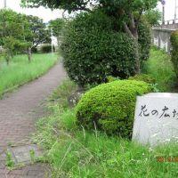 花の広場(2010年7月), Ацуги